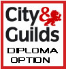 City & Guilds Diploma in IT Systems Support Available